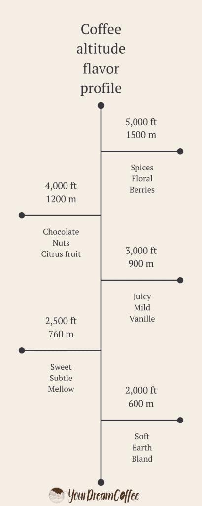 Coffee altitude flavor profile