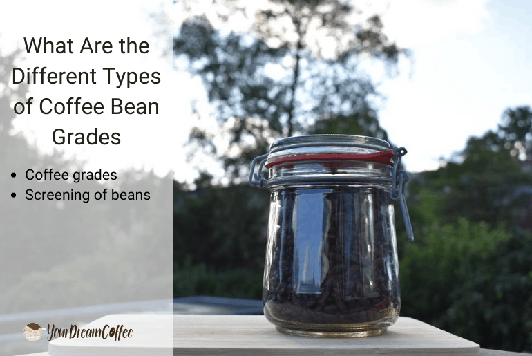 What Are the Different Types of Coffee Bean Grades