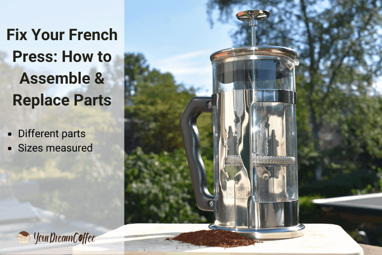 Fix Your French Press: How to Assemble & Replace Parts