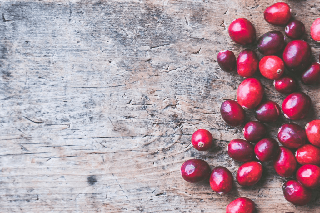 Coffee journey from bean to cup, coffee cherries