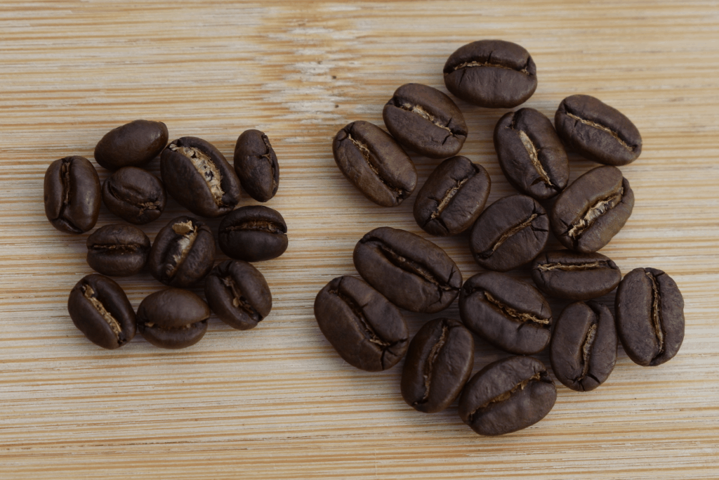 Peaberries next to regular coffee beans