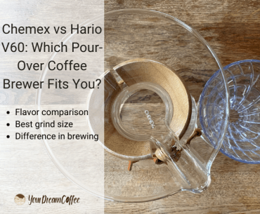 Chemex vs Hario v60: Which Pour-Over Coffee Brewer Fits You?