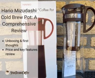 Hario Mizudashi Cold Brew Pot: A Comprehensive Review