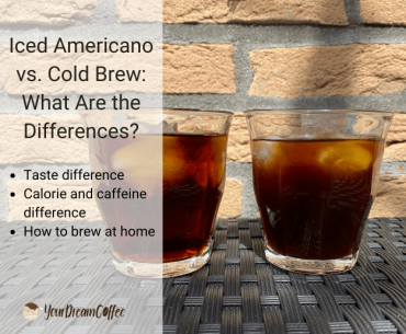 Iced Americano vs. Cold Brew: What Are the Differences?