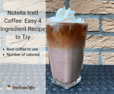 Nutella Iced Coffee: Easy 4 Ingredient Recipe to Try